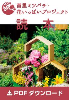 首里ミツバチ読本PDF