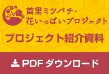 首里ミツバチ資料PDF